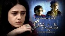 Shab-e-Zindagi OST - HD Full Title Song New Drama HumTv [2014]
