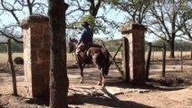 Estancia en Argentine - Voyage en Argentine
