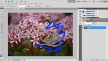Photoshop: Colors Not Working!? (Indexed Colors) - Tutorial