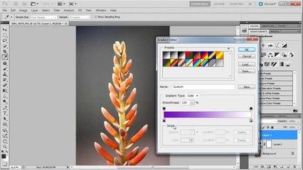 Photoshop: Colorize Images - Tutorial