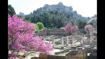 Provence (France). Camargue, Roman and Middle Ages art in Arles, Orange, Pont du Gard, Avignon