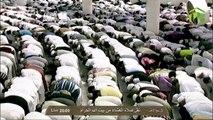 HD| Makkah Isha 3rd February 2014 Sheikh Talib
