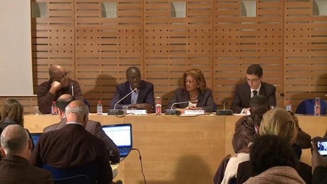 Encourager les investissements des diasporas - Conférence investir dans les villages d'Afrique