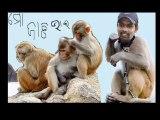 natraj behera orissa cricket team (10)