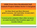 ~!1000 trees soft launch~!!~9871424442~!!~Sohna Road Sector 6 Gurgaon