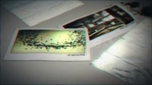 Morphing - After Effects Template