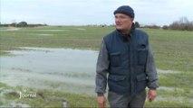 Agriculture : Les sols sont gorgés d'eau (St-Jean-de-Monts)