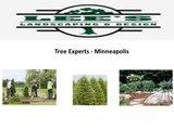 Lee's Landscaping & Design, Inc Minnesota Landscaping