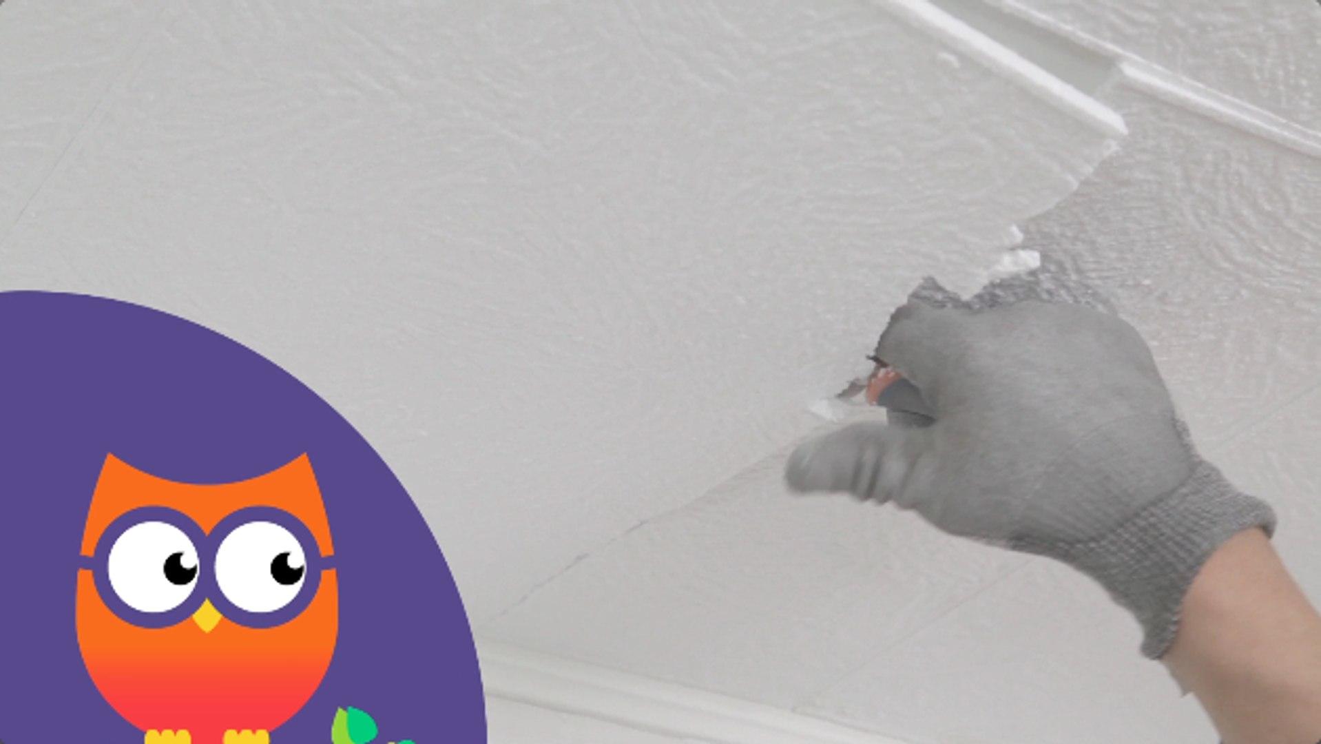 Comment Retirer Des Dalles Decoratives D Un Plafond Ooreka Fr