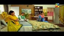 Shab-E-Zindagi Episode 3 By HUM TV