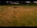 House jumping avec un Kyosho MP7.5