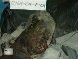 USA Using Chemical Weapons In Fallujah