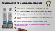 Shampoo for Dry and Damaged Hair: Restores Damaged Hair