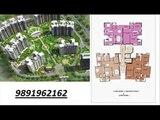 9891962162/ geoworks 1000 trees sector-6 sohna gurgaon road