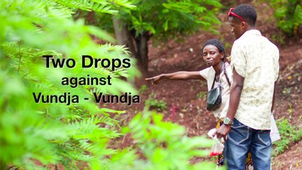 Two drops against vunja-vunja (polio) in DR Congo