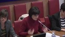 Audition de Marie-Arlette Carlotti à la commission des Affaires sociales de l'Assemblée nationale