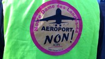 Déambulation contre l'aéroport de Notre-Dame-des-Landes