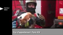 Les sapeurs-pompiers de Paris sortent un zapping de leurs interventions (extrait)