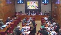 Intervention d'Hervé Féron en Commission des Affaires Culturelles et de l'Education : audition d'Alain Fuchs, président du CNRS - réponse (1ère partie)
