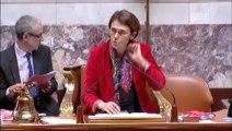 Seybah Dagoma - Amendement 72 - Loi Artisanat, Commerce et TPE - 13 février 2014