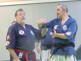 Travail du Kyusho-Jitsu sur le tronc avec yubibo par Jean-Paul BINDEL, Hanshi