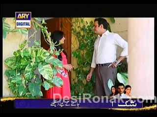 Meri Beti - Episode 20 - February 19, 2014 - Part 3