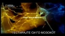 Тестирајте си го мозокот - Нема да им верувате на сопствените очи!