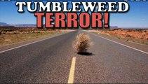 Girl has nervous breakdown driving over tumbleweeds!!