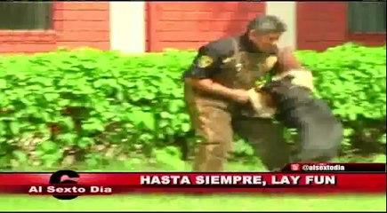 Hasta siempre Lay Fun: el adiós de un héroe peruano en cuatro patas