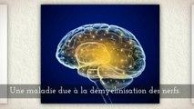 LA SCLEROSE EN PLAQUES – Dr. Bernard MONTAIN – Causes et symptômes de la sclérose en plaques