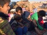 Анджелина Джоли приветствует резолюцию по Сирии