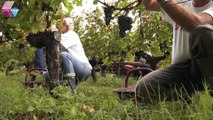 Xavier Planty - BORDEAUX-VINIPRO -  le Salon des vins Nouvelle Génération