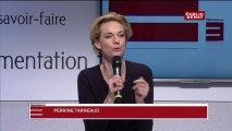 Didier Guillaume /OGM/Sénat