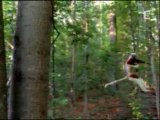 nature insolite: chute libre....