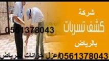 شركة رش مبيد قبل صبة النظافة بالرياض 0561378043 شركة مكافحة النمل الابيض بالرياض