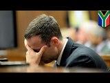 Oscar Pistorius trial: friend said Pistorius asked him to take the blame for shooting