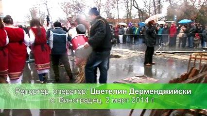 КУКЕРСКИ ПРАЗНИК С. ВИНОГРАДЕЦ (2 март 2014)