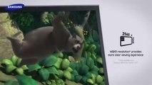 Samsung PC SERIES 7 chez  Promos Informatiques - Promotions Informatiques