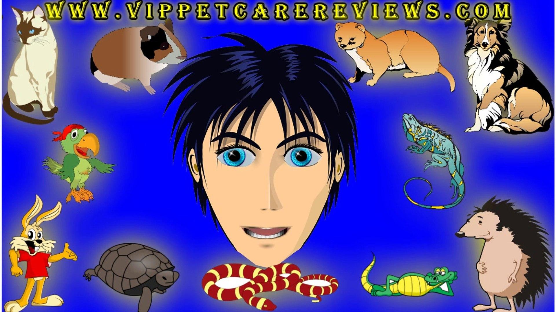 Pet care VIP Pet Care Reviews Pet Care