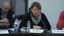 CM 18/11/13 - 17 - Présentation des rapports d'activités des Etablissements Publics de Coopération Intercommunale (EPCI) pour l'année 2012