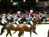 Horse ball salon du cheval