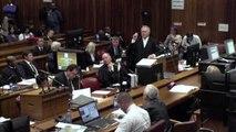 L'avocat de Pistorius tente de déstabiliser une des témoins