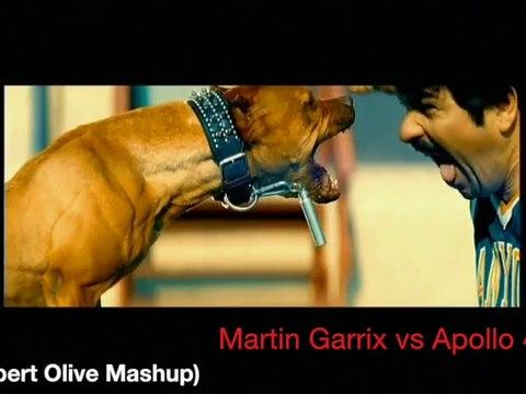 Martin Garrix vs Apollo 440  - Stop the Animals (Albert Olive Mashup)