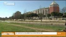 L'hiver aura été doux en Languedoc-Roussillon