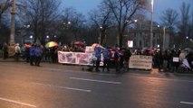 """Romania normala cap! Protest impotriva criminalilor si a afacerii """"maidanezul"""", 8 martie, Piata Victoriei, Bucuresti, prima parte"""