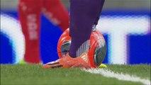 Toulouse FC - Stade de Reims (3-2) - 08/03/14 - (TFC-SdR) -Résumé