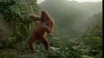 I Like To Move It - Monkey Dance!! LOL