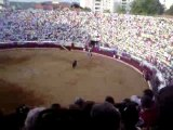 corrida a cheval aux arènes de bayonne