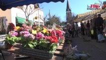 VidéoVilles : Chambray-lès-Tours, quand la jeunesse s'engage