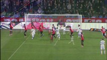 But Ola TOIVONEN (14ème csc) - Stade Rennais FC - Toulouse FC - (2-3) - 15/03/14 - (SRFC-TFC)